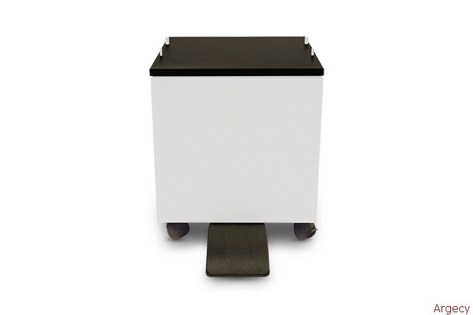 Epson C12CFM7066 - purchase from Argecy